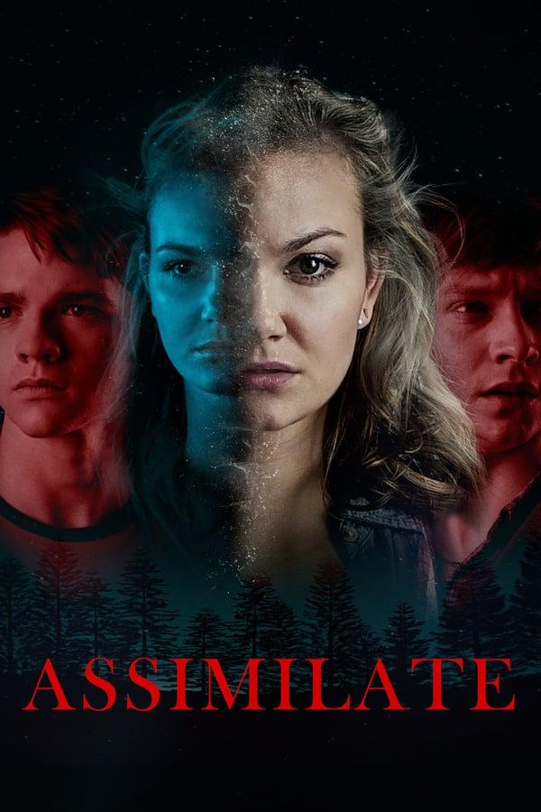 ასიმილაცია / Assimilate