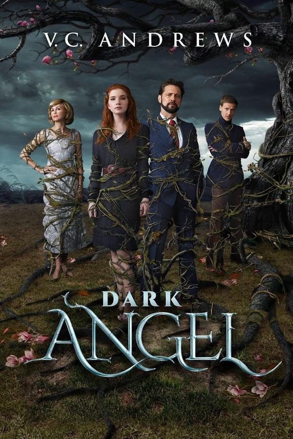 ბნელი ანგელოზი / Dark Angel