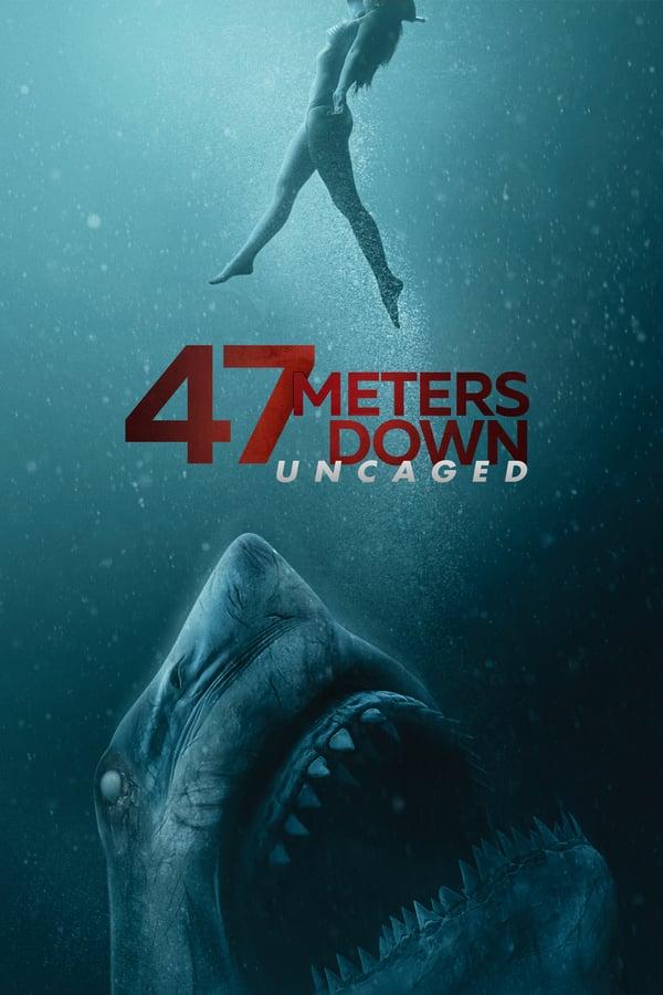 47 მეტრი ქვემოთ 2: გალიიდან გამოშვებული / 47 Meters Down: Uncaged