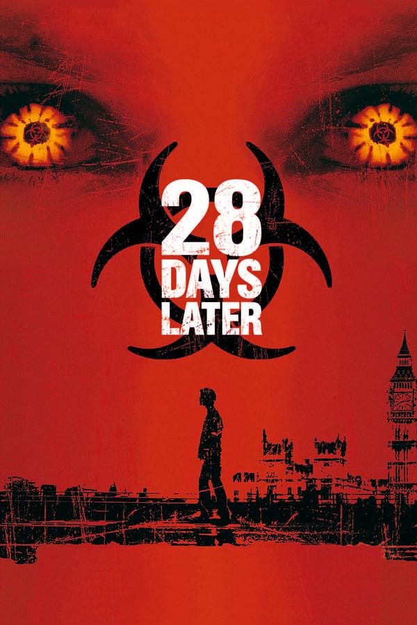 28 დღის შემდეგ / 28 Days Later...
