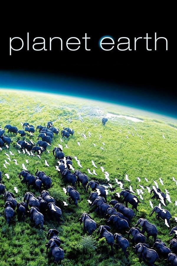 პლანეტა დედამიწა / Planet Earth