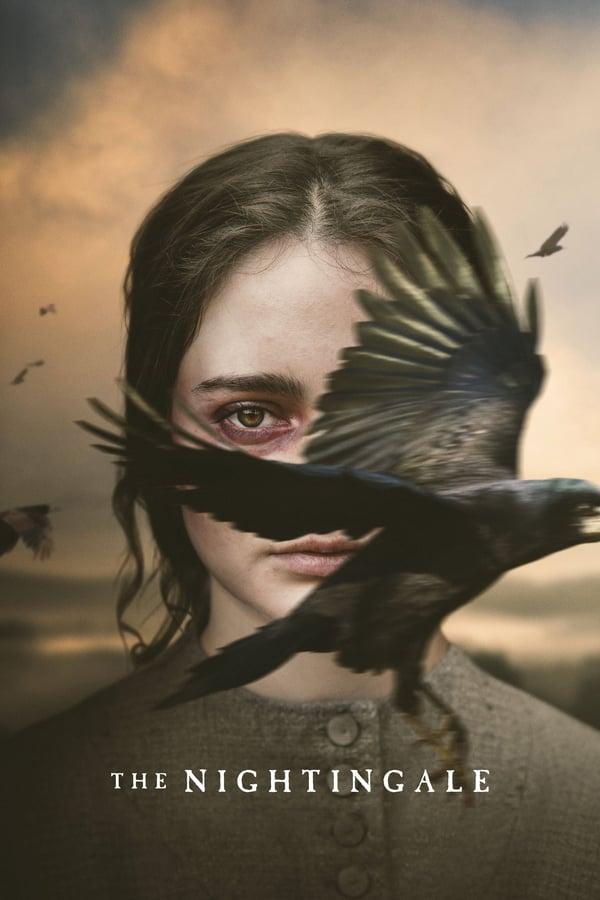 ბულბული / The Nightingale