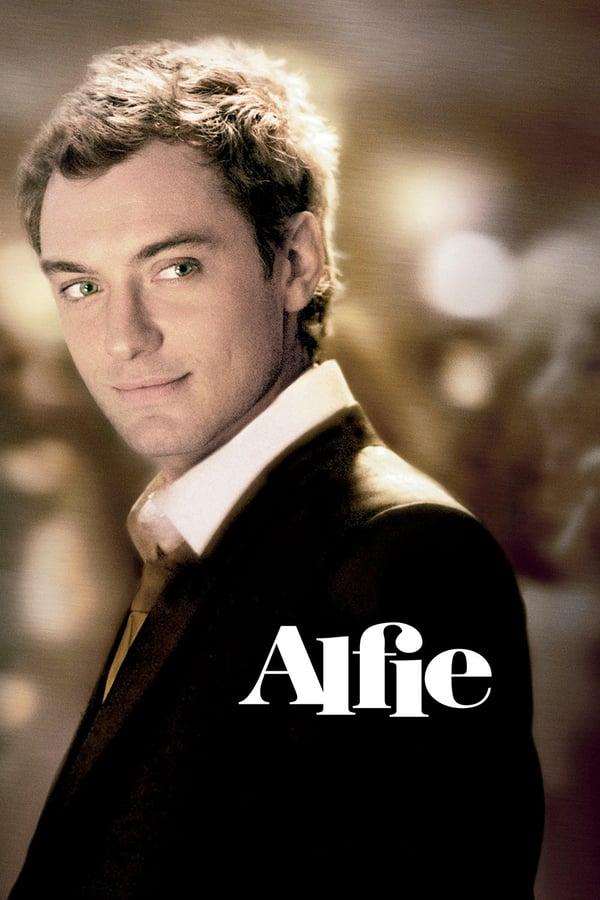 ალფი / Alfie