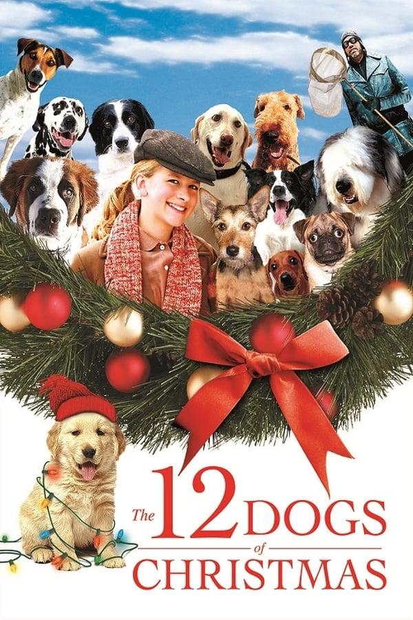 12 საშობაო ძაღლი / The 12 Dogs of Christmas