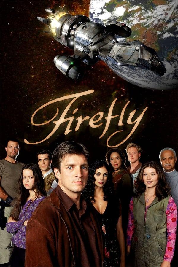 ციცინათელა / Firefly