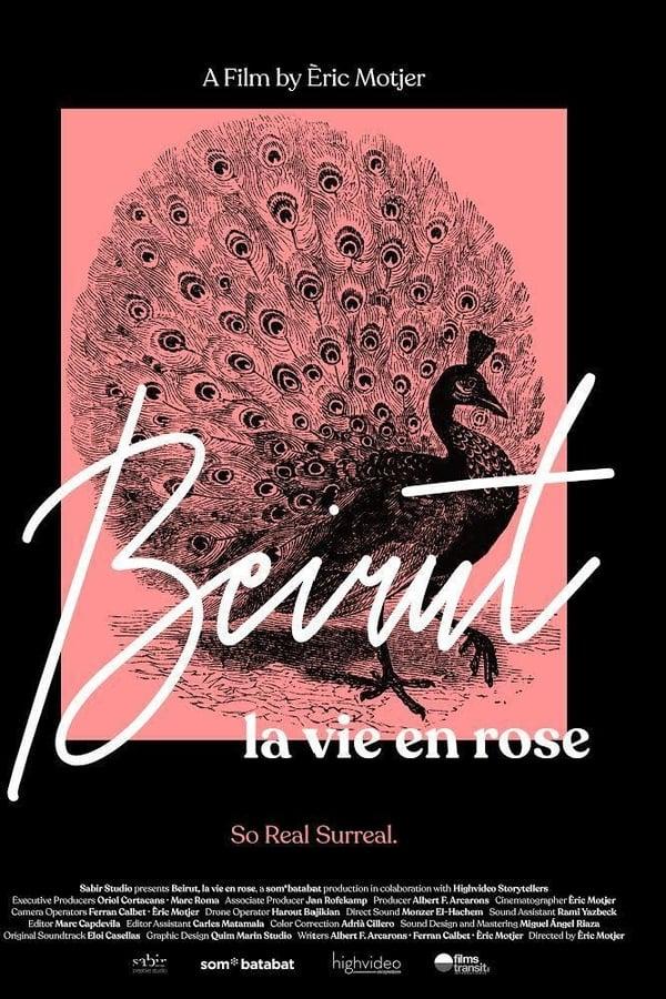 ცხოვრება ვარდისფერ ფერებში / La Vie en Rose