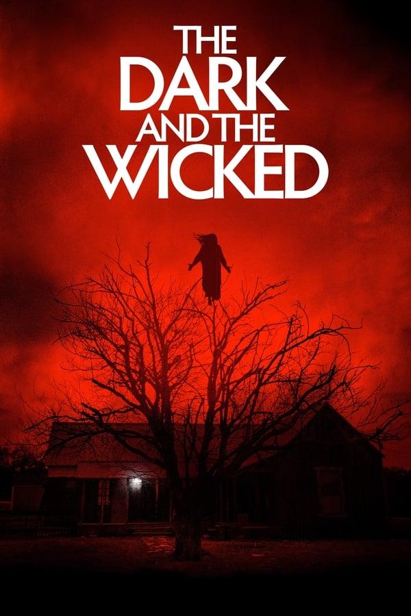 ბნელი და ცოდვილი / The Dark and the Wicked