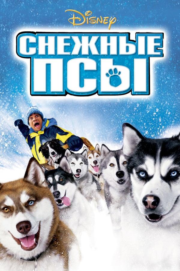 ზამთრის ძაღლები / Snow Dogs