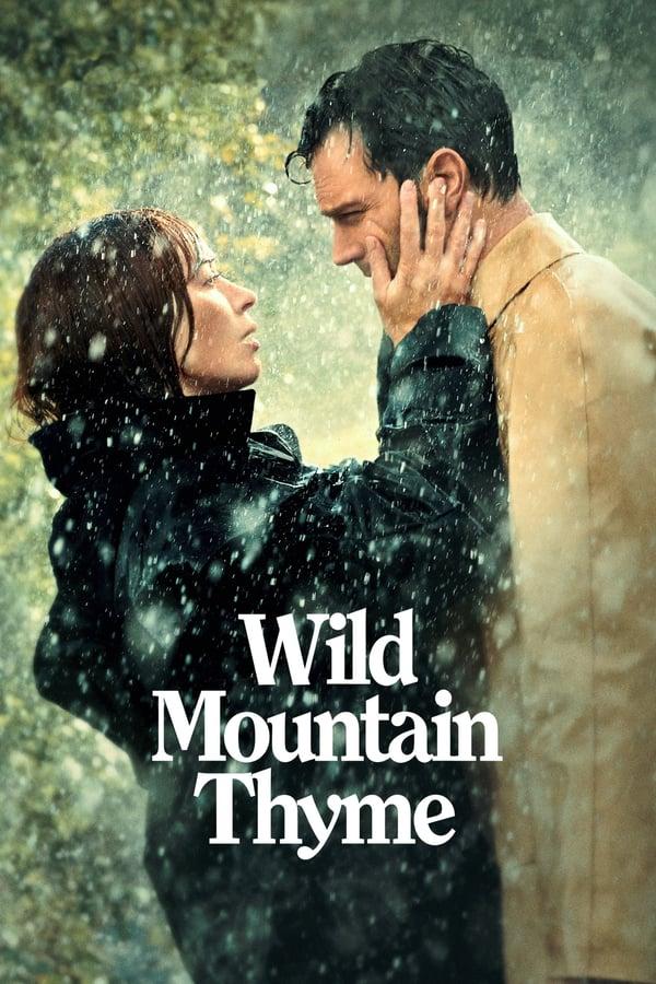 ველური ქონდარა / Wild Mountain Thyme