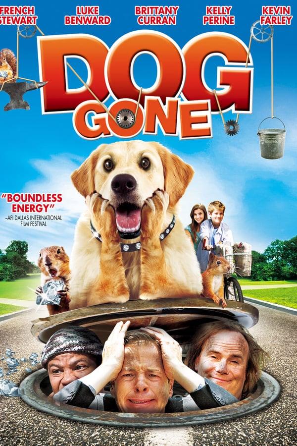 დაკარგული ძაღლი / Dog Gone