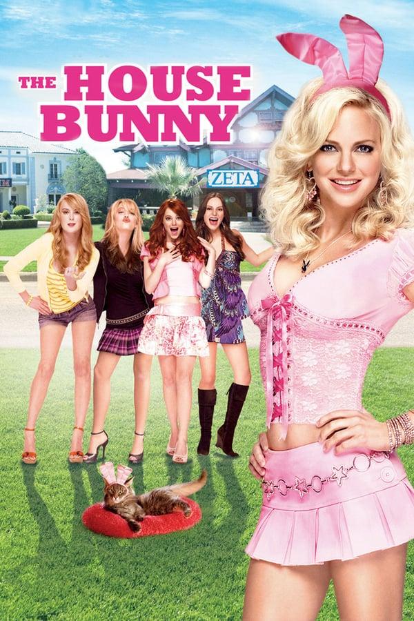 სახლის კურდღელი / The House Bunny