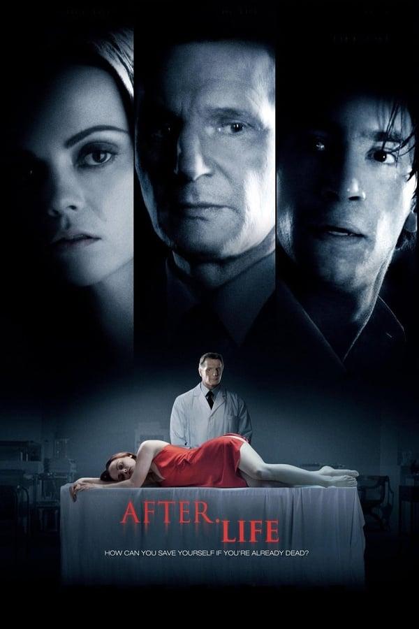 სიცოცხლის შემდეგ / After.Life