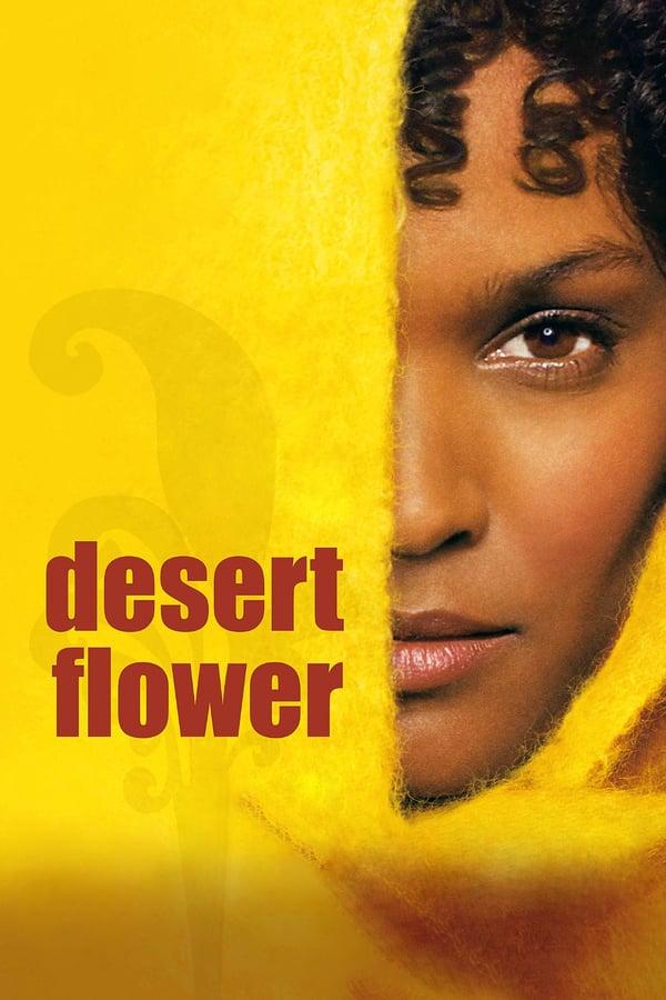 უდაბნოს ყვავილი / Desert Flower