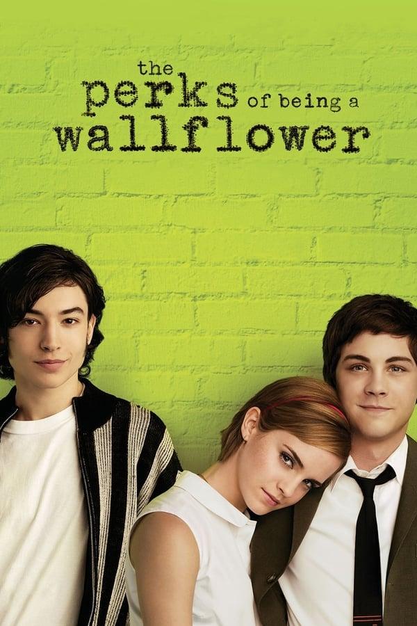 მარტოსულობის უპირატესობანი / The Perks of Being a Wallflower