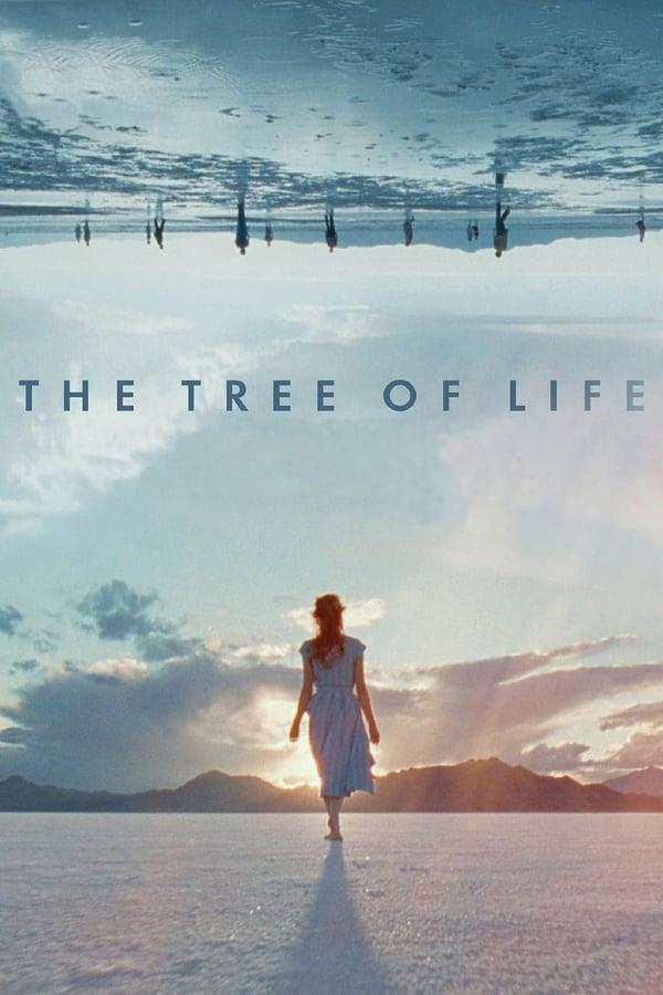 სიცოცხლის ხე / The Tree of Life