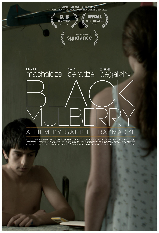 შავი თუთა / Black Mulberry