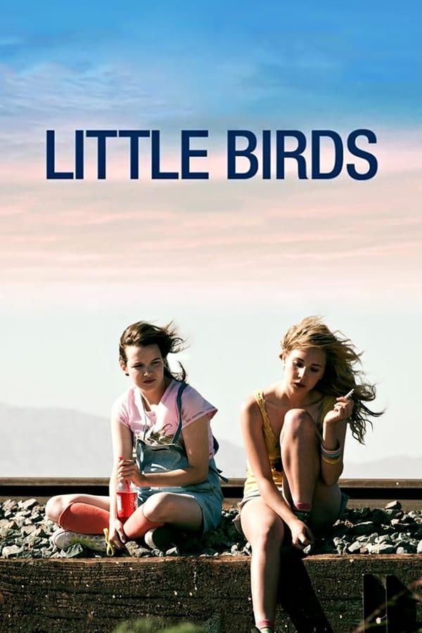 ბარტყები / Little Birds