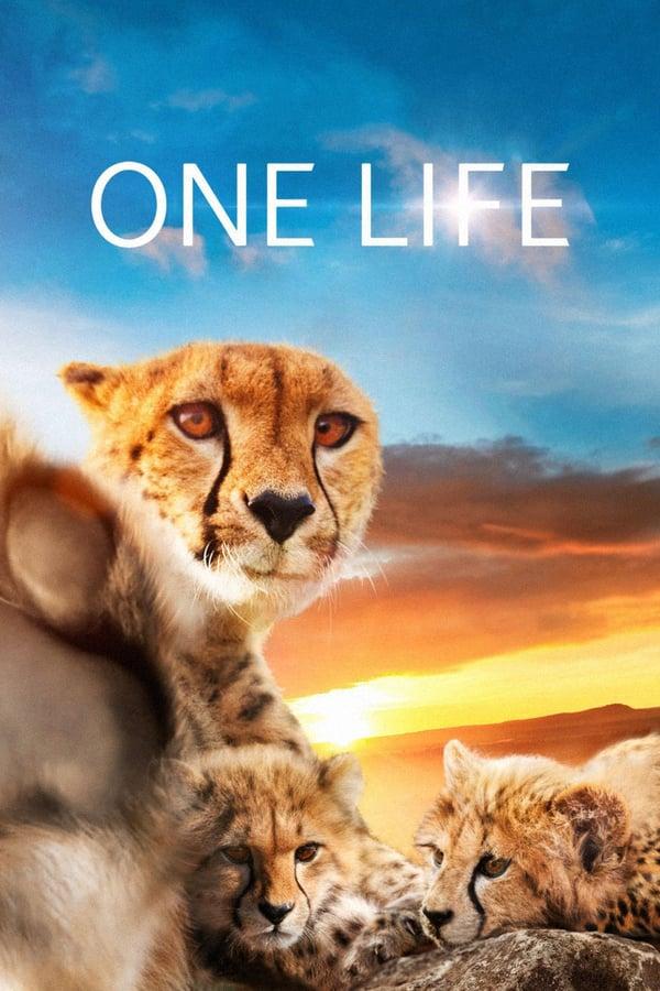 ერთი სიცოცხლე / One Life