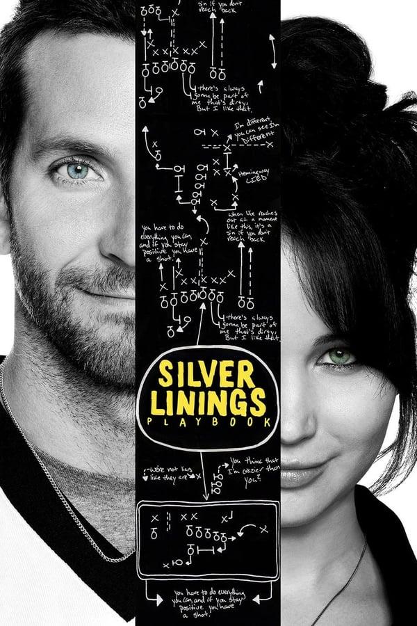 იმედის სხივთა კრებული / Silver Linings Playbook