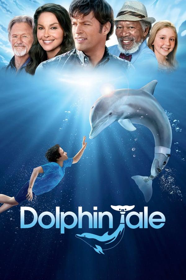 დელფინის ამბავი / Dolphin Tale