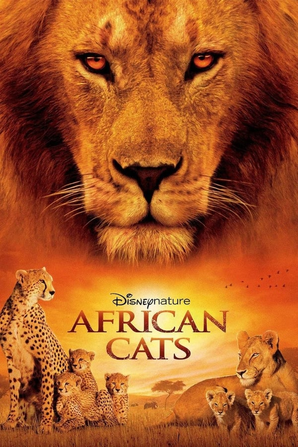 აფრიკული კატები / African Cats
