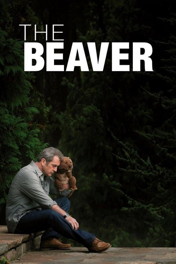 თახვი / The Beaver