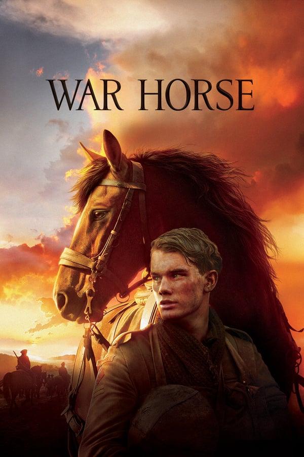 საომარი ცხენი / War Horse