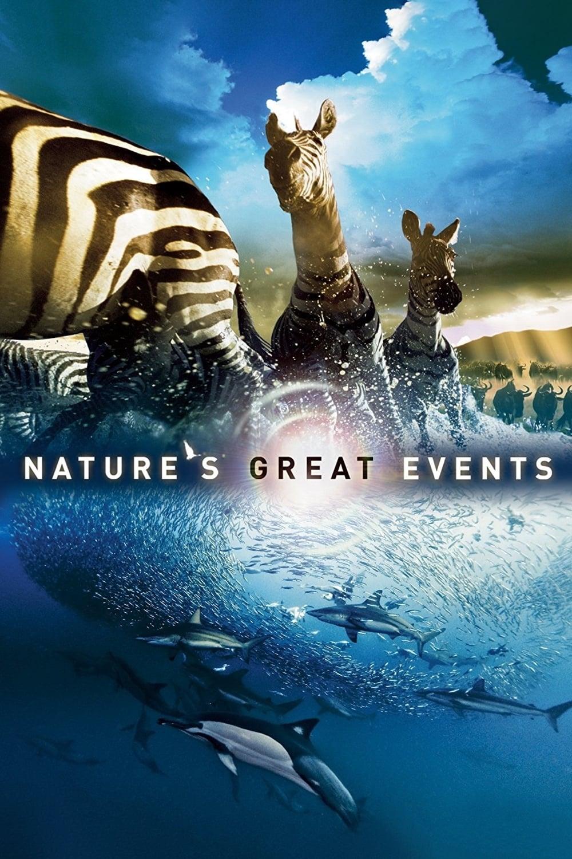 ბუნების დიდებული ქმნილებები / Natures Most Amazing Events