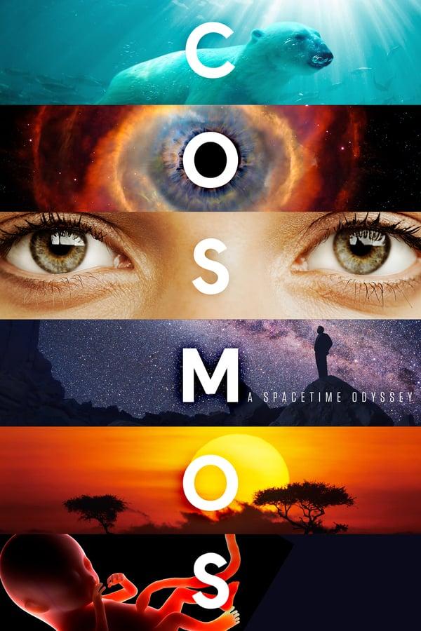 კოსმოსი: სივრცე და დრო / Cosmos: A Spacetime Odyssey