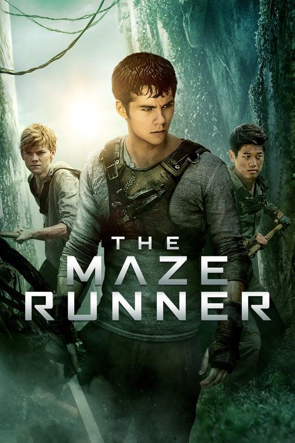 ლაბირინთში მორბენალი / The Maze Runner