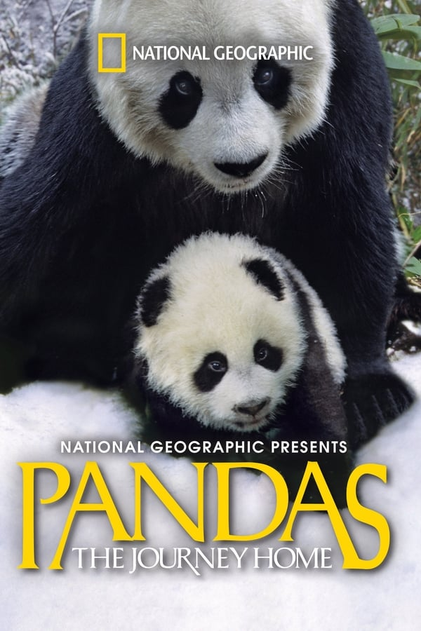 პანდები: შინ დაბრუნება / Pandas: The Journey Home
