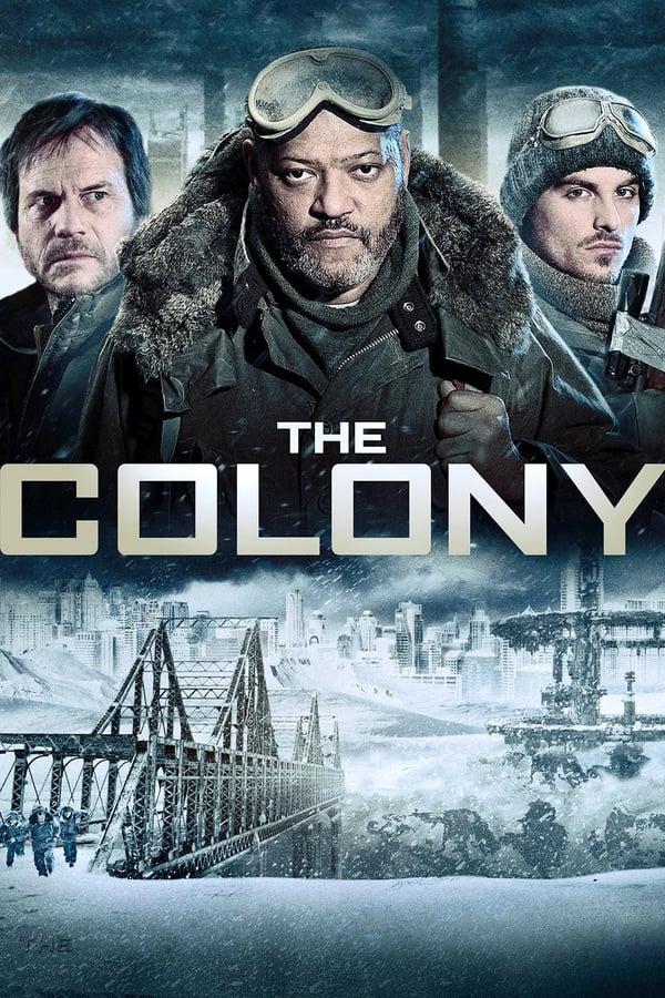 კოლონია / The Colony
