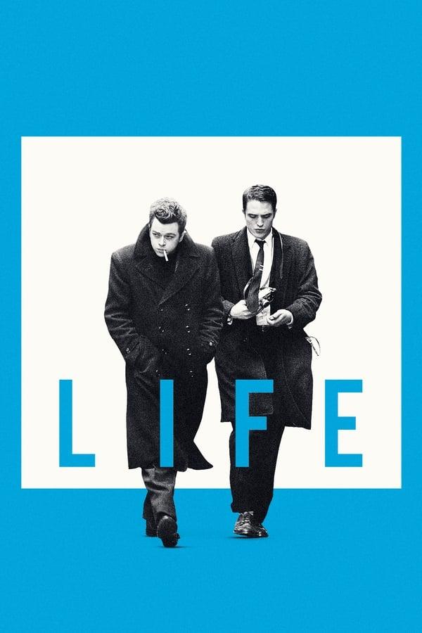 ცხოვრება / Life