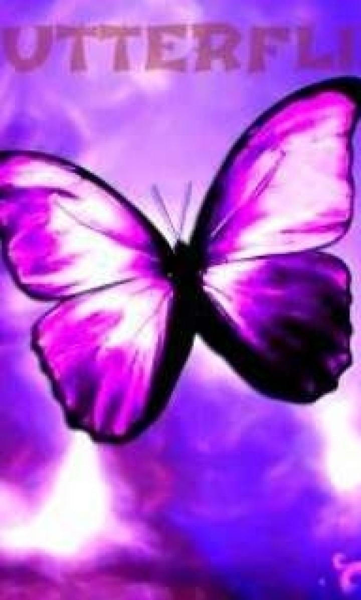 პეპლები / Butterflies