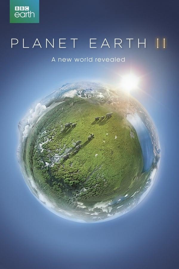 პლანეტა დედამიწა II / Planet Earth II