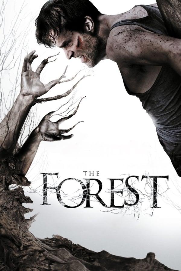 ტყე / The Forest